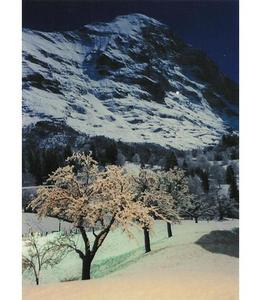 EIGER, FULL MOON, Grindelwald photo