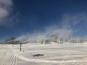 lovely view, Hyland Ski and Snowboard Area photo