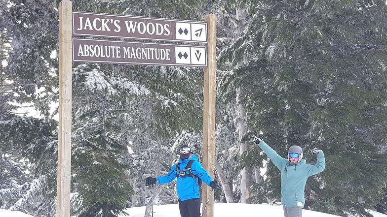 Jacks woods, Mt Hood Meadows