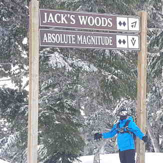 Jacks woods, Mt Hood Meadows