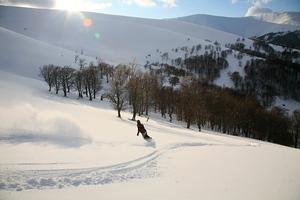 At the hills of Borzhava ridge, Podobovets photo