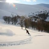 At the hills of Borzhava ridge, Podobovets