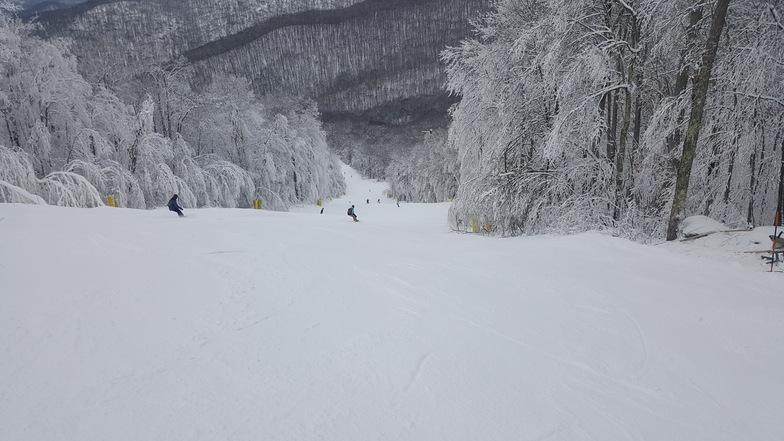 Snowshoe Mountain Resort snow