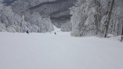 Snowshoe Mountain Resort Ski Resort by: sewelch70