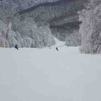Cupp Run, Snowshoe Mountain Resort