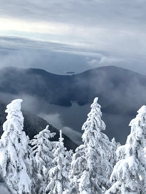 Bowen Island from Sky Chair lift, Cypress Mountain