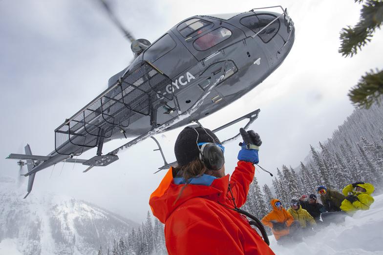 Adrenalin Descents heli drop ski touring, Kicking Horse