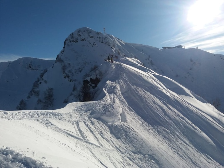 Looking for good line, Альпика