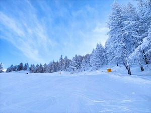 quiet slope, Bardonecchia photo