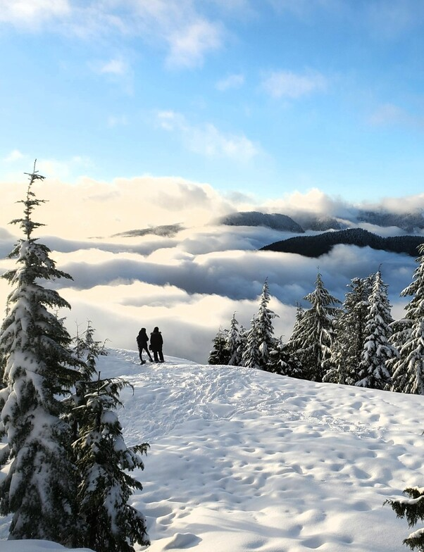 Above the clouds, Mt Seymour