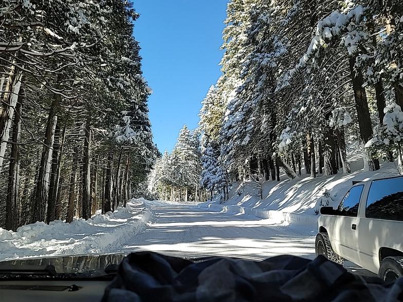 Alta Sierra at Shirley Meadows snow