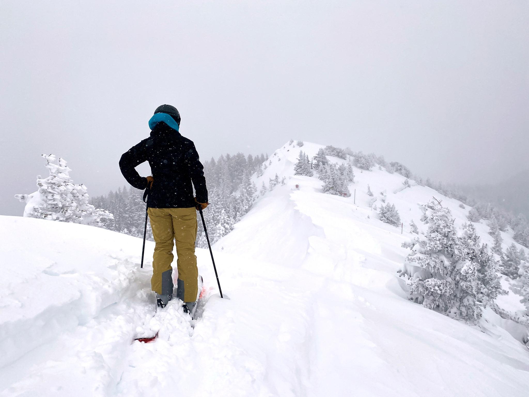 snowy, Taos