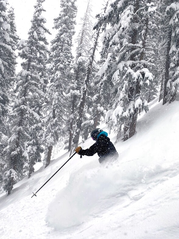 deep powder, Taos
