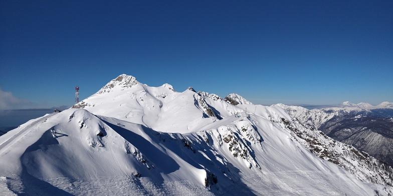 Альпика snow