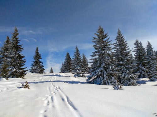 Vitosha Ski Resort by: Lyubomir Goshev