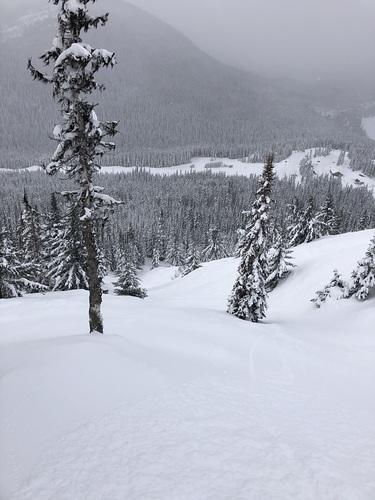 Manning Park Resort Ski Resort by: Charles Wood