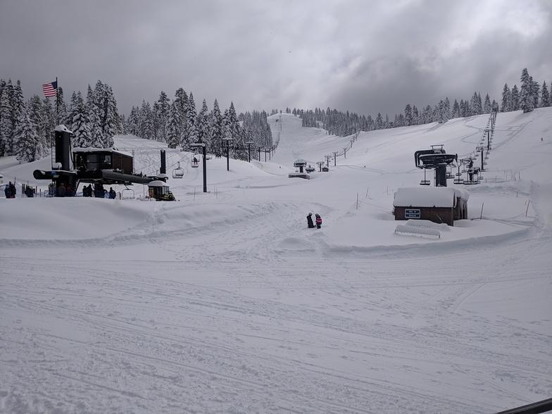 Dodge Ridge snow