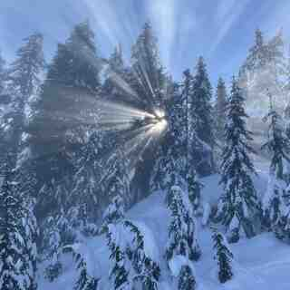 Rays of Sun on Trumpeter, Cypress Mountain