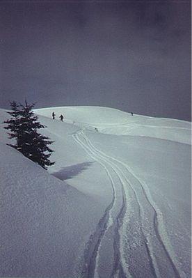 St Johann in Tirol Ski Resort by: klaus9