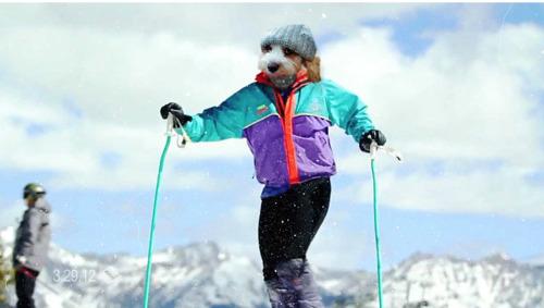 Chamonix Ski Resort by: Snow Forecast Admin