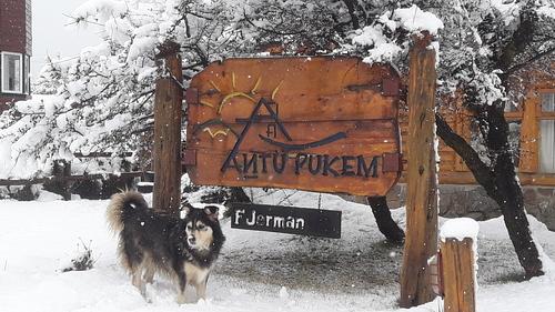 Cerro Catedral Ski Resort by: pechu