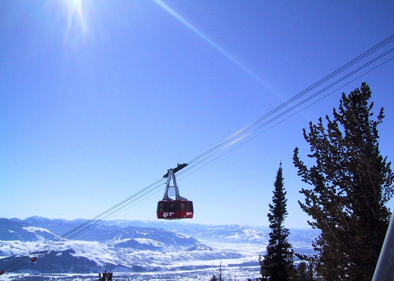The Aerial Tram, Jackson Hole, WY