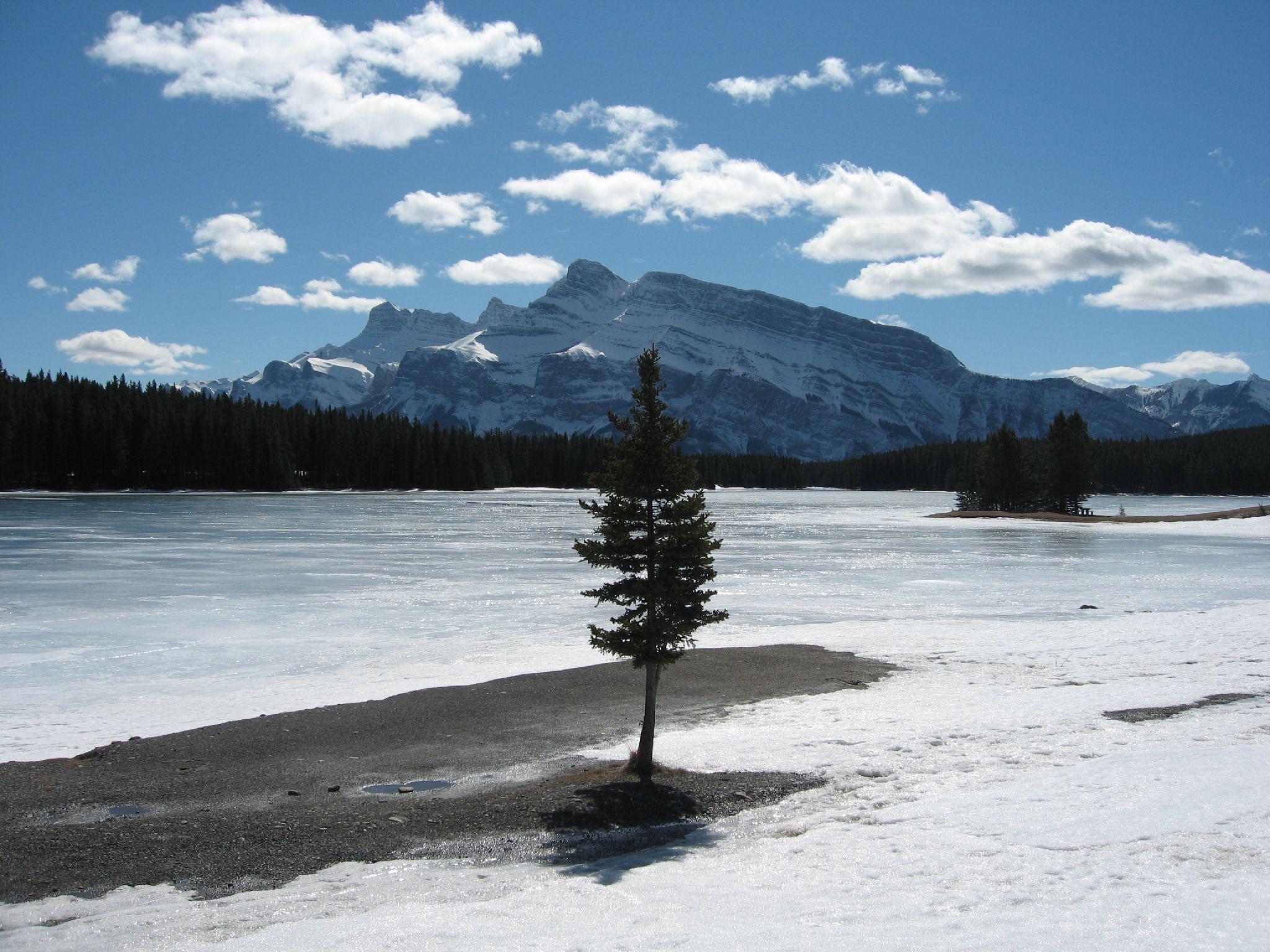 Frozen Lakeside in Banff, Banff Mt Norquay