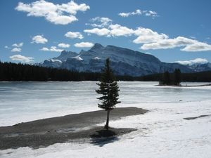 Frozen Lakeside in Banff, Banff Mt Norquay photo