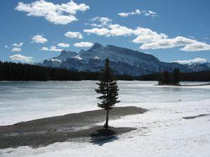Frozen Lakeside in Banff, Banff Mt Norquay photo