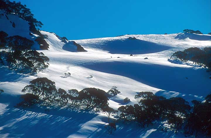 Slopes behind Schlink Pass, Selwyn Snowfields