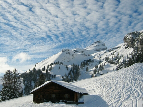 Leysin Resort Guide