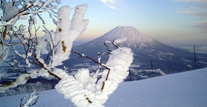 Ice formations, Niseko Weiss photo