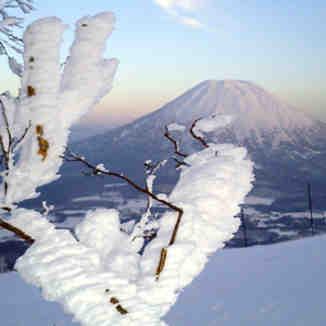Ice formations, Niseko Weiss