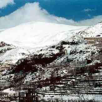 The lebanese mountains during winter season., Cedars