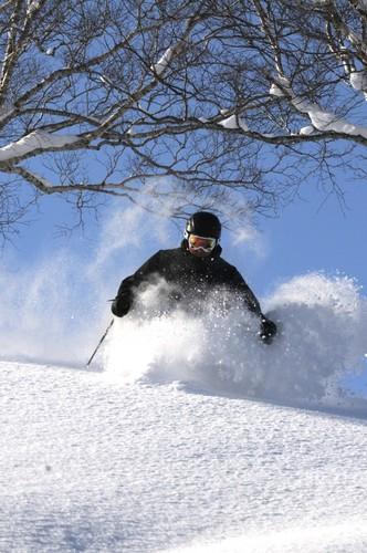 Niseko Weiss Ski Resort by: Dean Williams