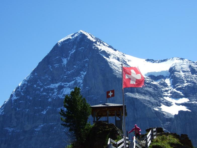 Wengen Eiger 3996 m