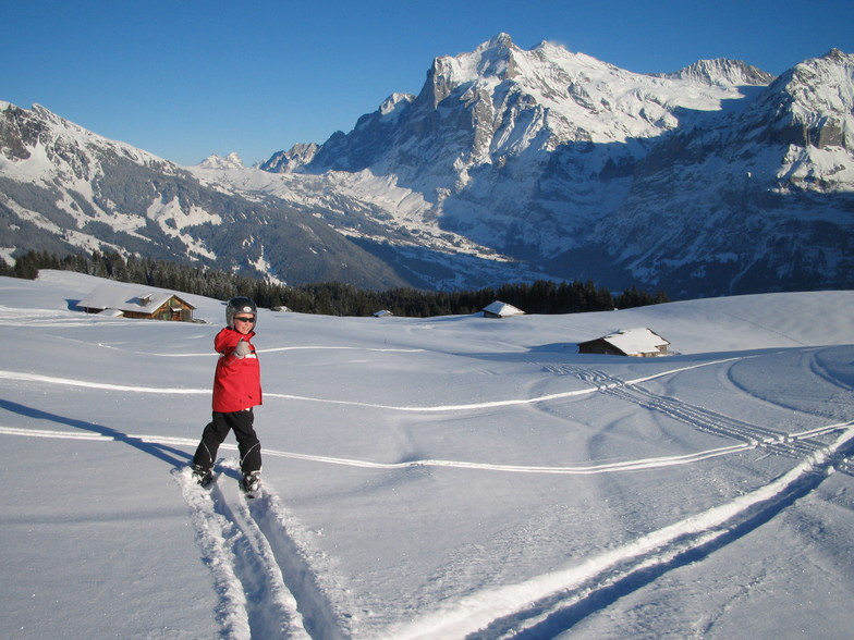 Wengen Skiing with fun