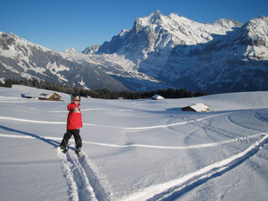 Wengen Skiing with fun photo