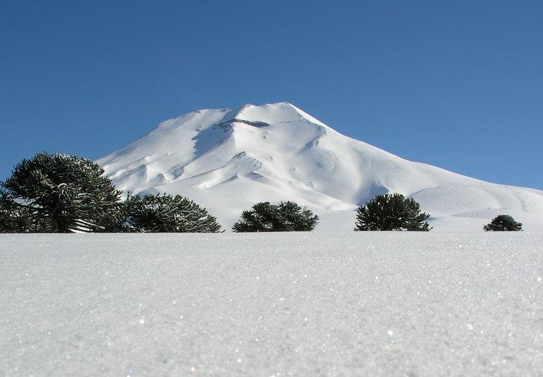 Corralco Lonquimay, Nevados de Chillan