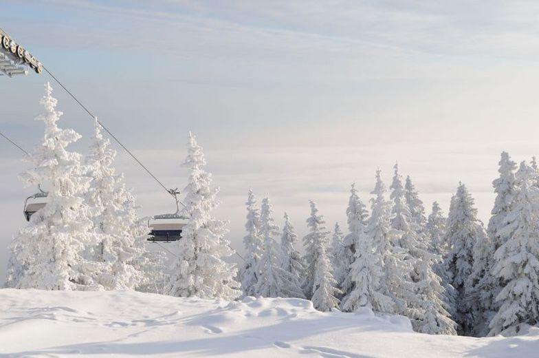 Top of Floch ski slope, Martinky