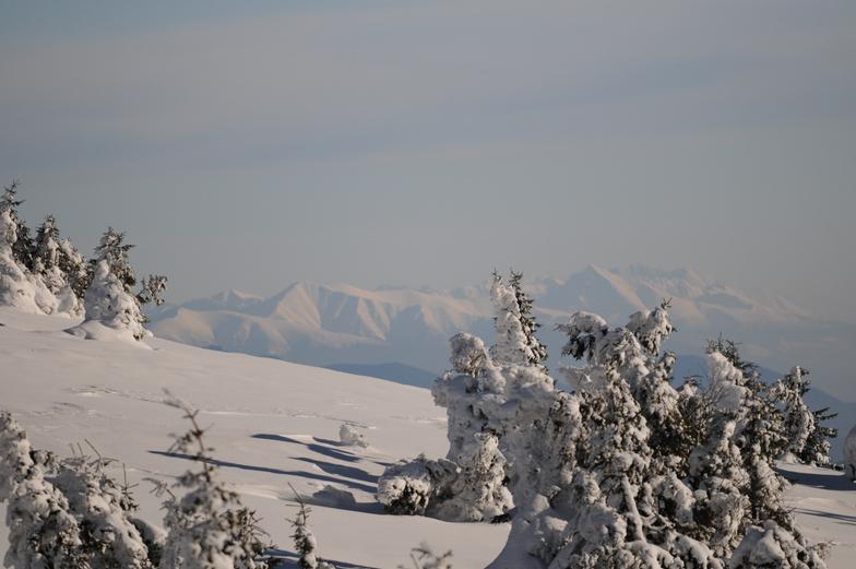 Mountains, Martinky