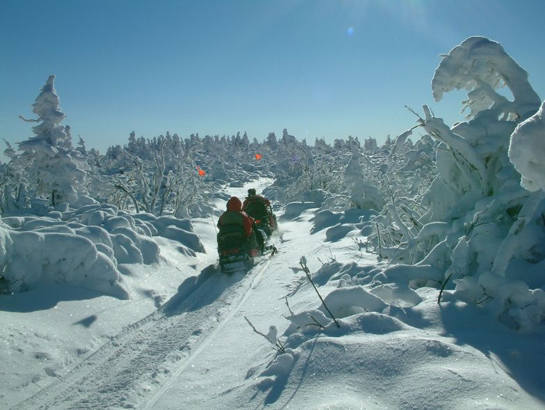 Snowmobiles, Martinky