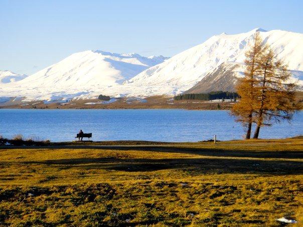 lake tekapo, Roundhill