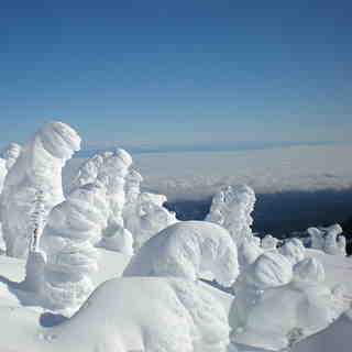 snow goblins, Mount Washington