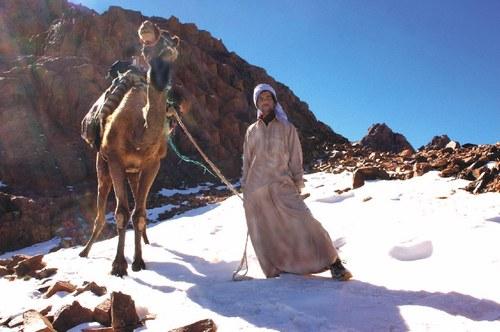 Jabal Katherina Resort Guide