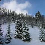 Les Gets, Mont Chery