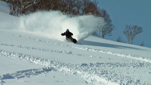 niseko powder, Niseko Grand Hirafu photo