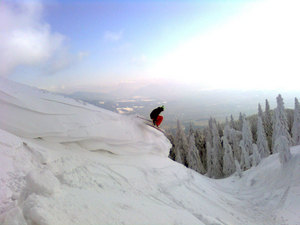 Freeride, Martinky photo