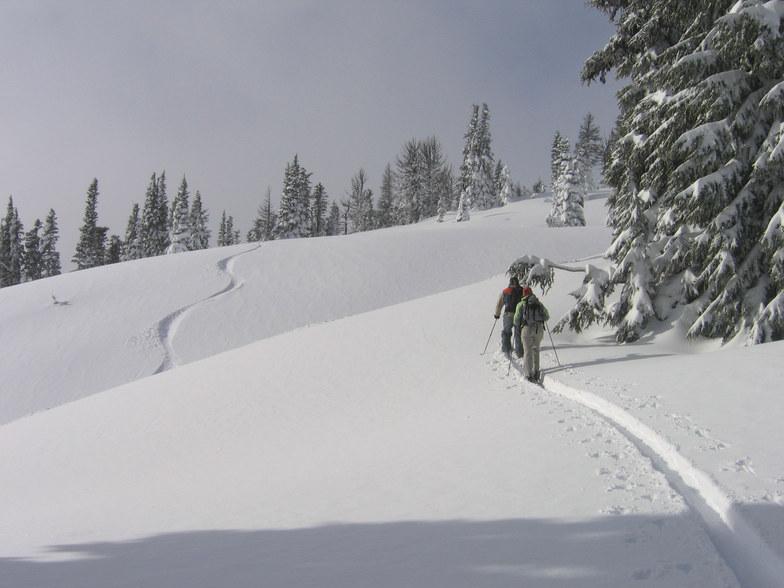 Mt Hood Meadows snow