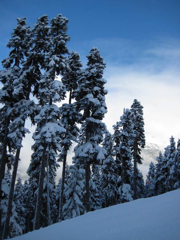 Rare blue skies in Whistler, Whistler Blackcomb